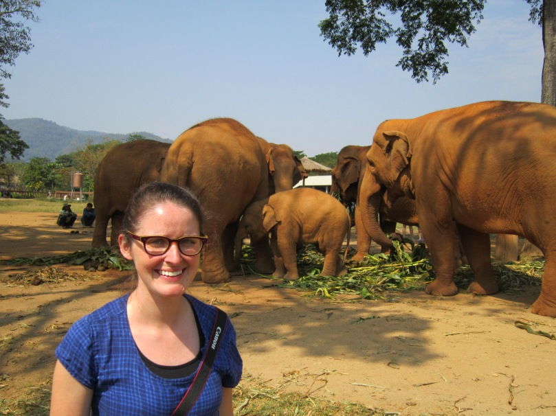 Scout Tee With Elephants